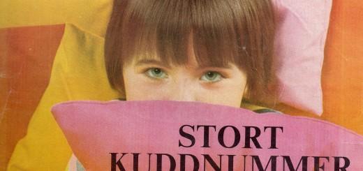 Stockholm Husmodern 1965