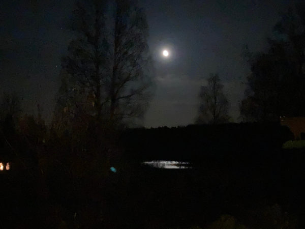 Månen lyser över sjön